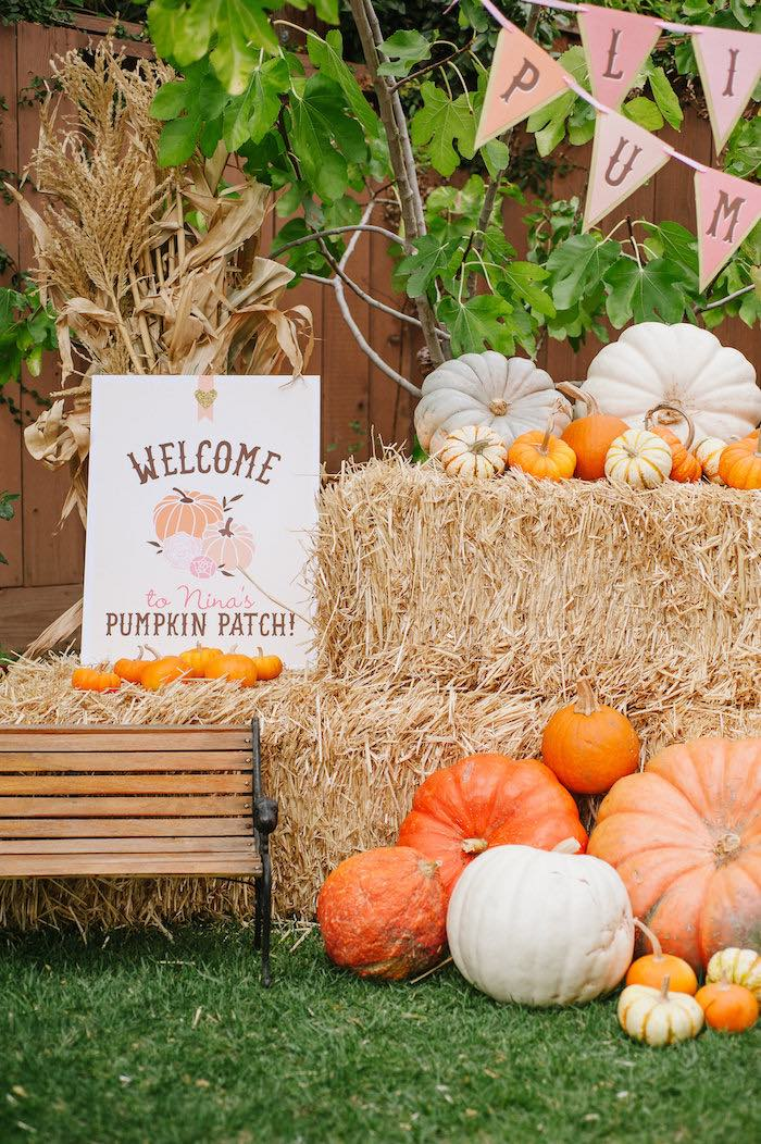 Kara S Party Ideas Quot Little Pumpkin Quot Fall Picnic Birthday