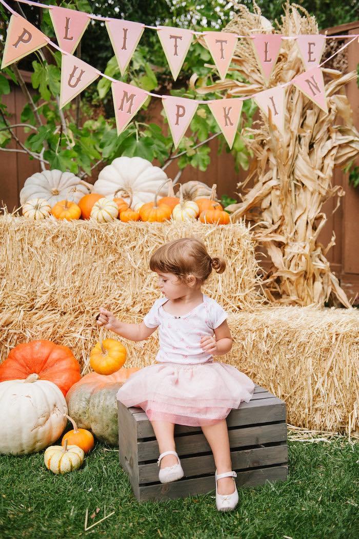 """Little Pumpkin"" Fall Picnic Birthday Party on Kara's Party Ideas | KarasPartyIdeas.com (7)"