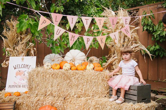 """Little Pumpkin"" Fall Picnic Birthday Party on Kara's Party Ideas | KarasPartyIdeas.com (5)"