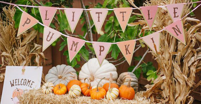 Karas party ideas little pumpkin fall picnic birthday party karas party ideas little pumpkin fall picnic birthday party karas party ideas filmwisefo