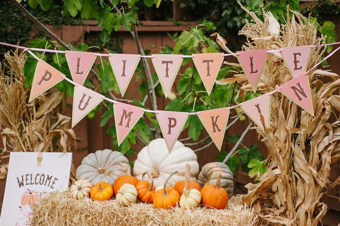 """Little Pumpkin"" Fall Picnic Birthday Party on Kara's Party Ideas   KarasPartyIdeas.com (48)"