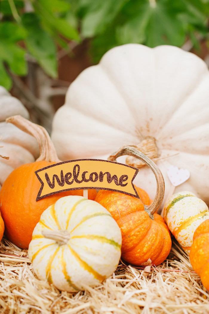 """Little Pumpkin"" Fall Picnic Birthday Party on Kara's Party Ideas | KarasPartyIdeas.com (44)"