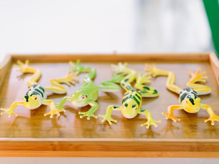 Plastic frogs from a Mad Science Birthday Party on Kara's Party Ideas | KarasPartyIdeas.com (4)