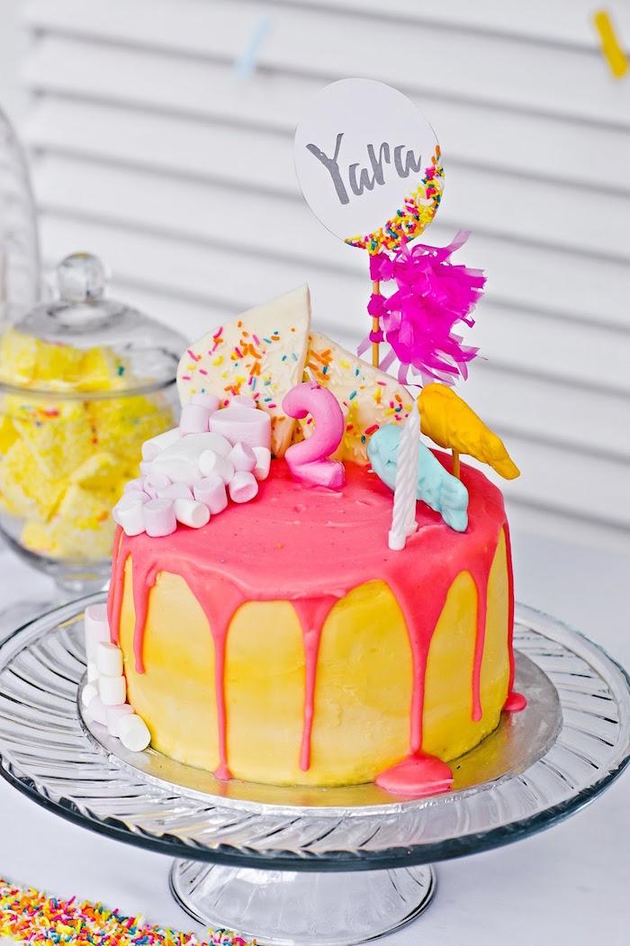 Drizzle birthday cake from a Marshmallows & Sprinkles Birthday Party on Kara's Party Ideas | KarasPartyIdeas.com (24)