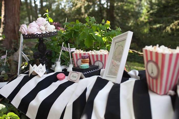 Kara S Party Ideas Parisian Love Outdoor Picnic Birthday
