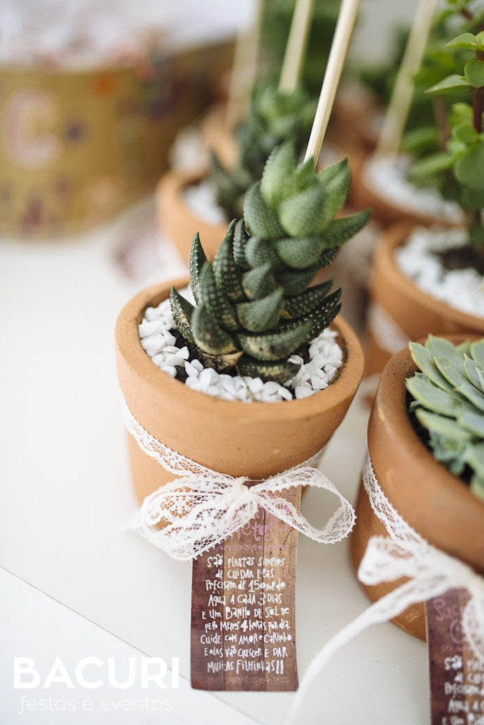 Succulent favor from a Rag Doll Themed Birthday Party on Kara's Party Ideas | KarasPartyIdeas.com (12)