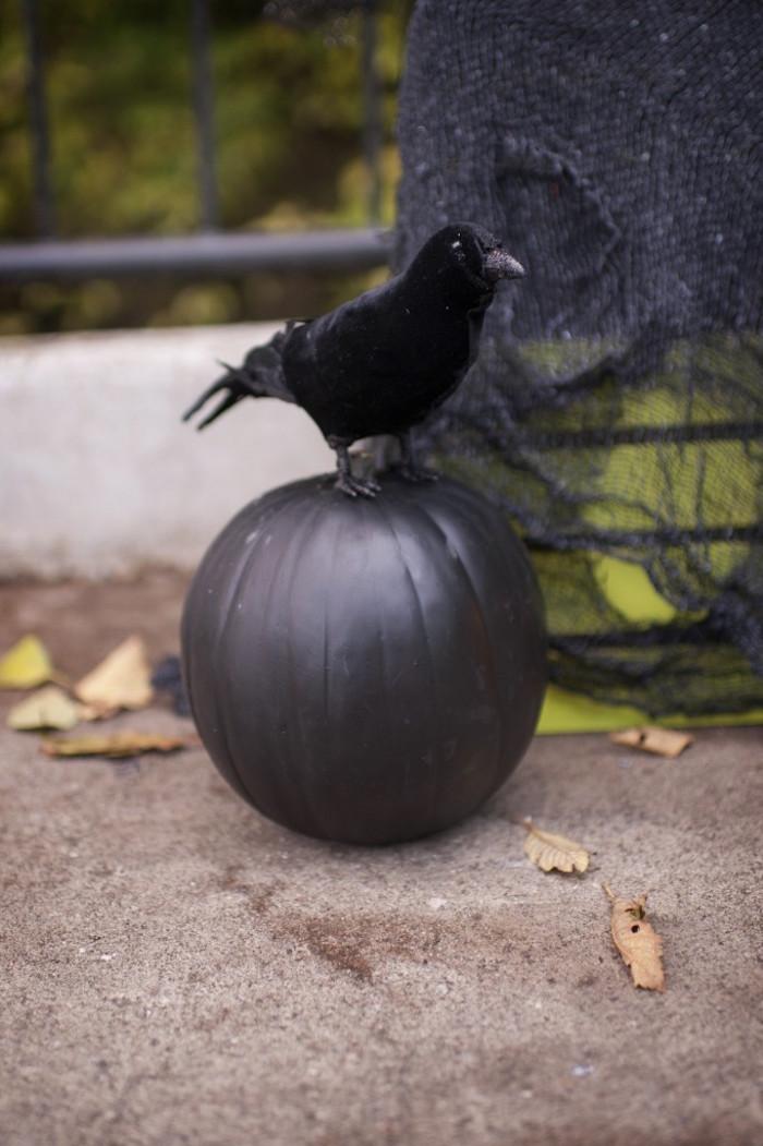 Black pumpkin and felt crow from a Spooktacular Halloween Party via Kara's Party Ideas | KarasPartyIdeas.com (12)