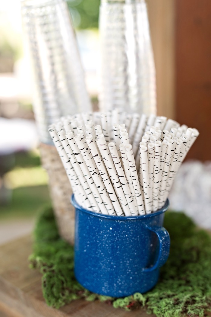 Birch tree paper straws from a Summer Camp + Camping Birthday Party on Kara's Party Ideas | KarasPartyIdeas.com (33)