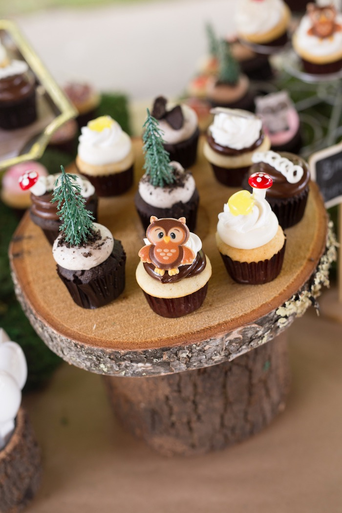 Adorable camp themed cupcakes from a Summer Camp + Camping Birthday Party on Kara's Party Ideas | KarasPartyIdeas.com (15)
