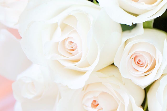 White roses from a Glam Floral My Little Pony Birthday Party on Kara's Party Ideas | KarasPartyIdeas.com (26)