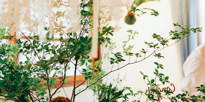 Greenhouse Themed Japanese Reception Party on Kara's Party Ideas | KarasPartyIdeas.com (1)