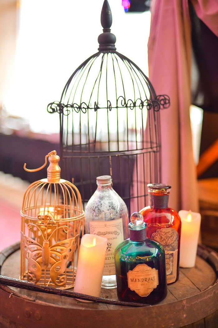 Elixirs & potions from a Maleficent Birthday Party on Kara's Party Ideas | KarasPartyIdeas.com (19)