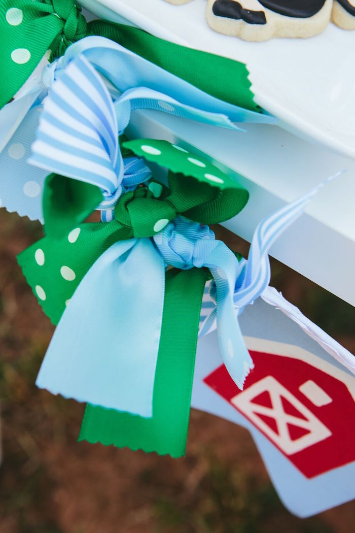 Ribbon fringe from a banner at a Preppy Barnyard Farm Party on Kara's Party Ideas | KarasPartyIdeas.com (22)
