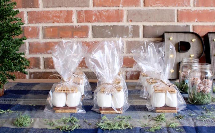 S'more favors from a Rustic Woodland Camping Birthday Party on Kara's Party Ideas | KarasPartyIdeas.com (6)