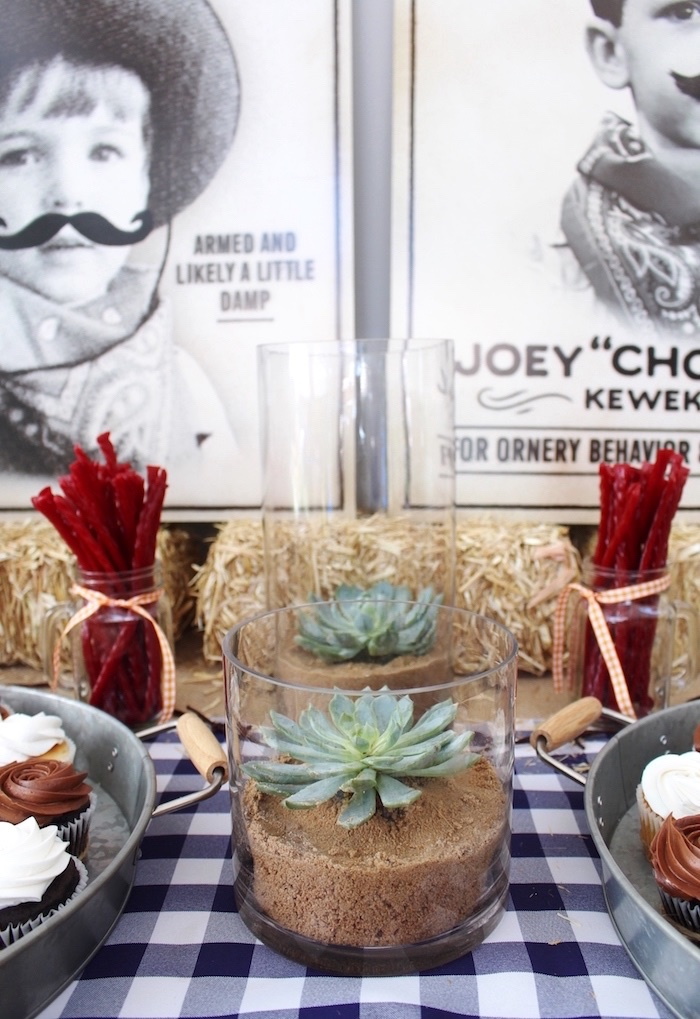 Succulent centerpieces from a Western Rodeo Birthday Party on Kara's Party Ideas | KarasPartyIdeas.com (18)