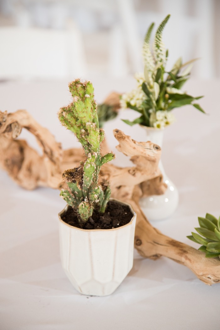 Cactus centerpiece from a Cactus Themed 1st