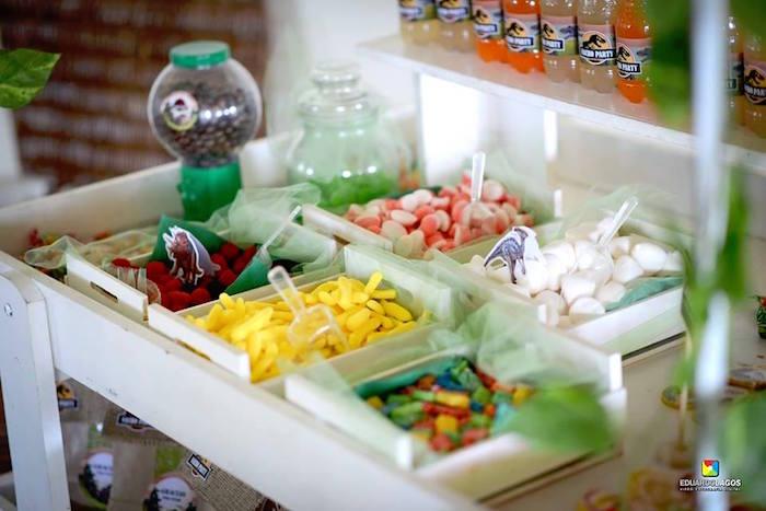 Dinosaur candy buffet from a Dinosaur Birthday Party on Kara's Party Ideas | KarasPartyIdeas.com (41)