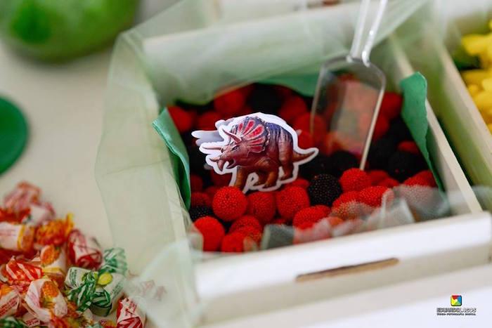Raspberry and blackberry candy with dinosaur tag from a Dinosaur Birthday Party on Kara's Party Ideas | KarasPartyIdeas.com (40)