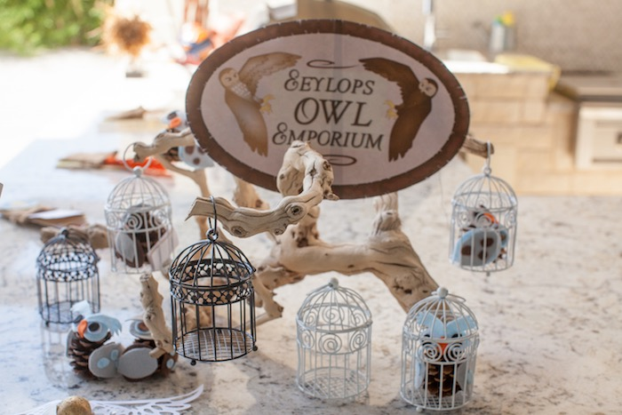 Harry Potter Birthday Party on Kara's Party Ideas | KarasPartyIdeas.com (35)