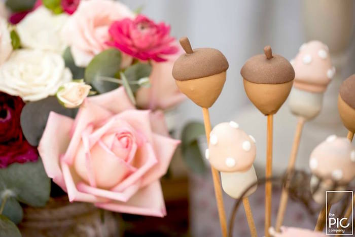 Acorn & toadstool cake pops from a Woodland Animal Birthday Party on Kara's Party Ideas | KarasPartyIdeas.com (17)
