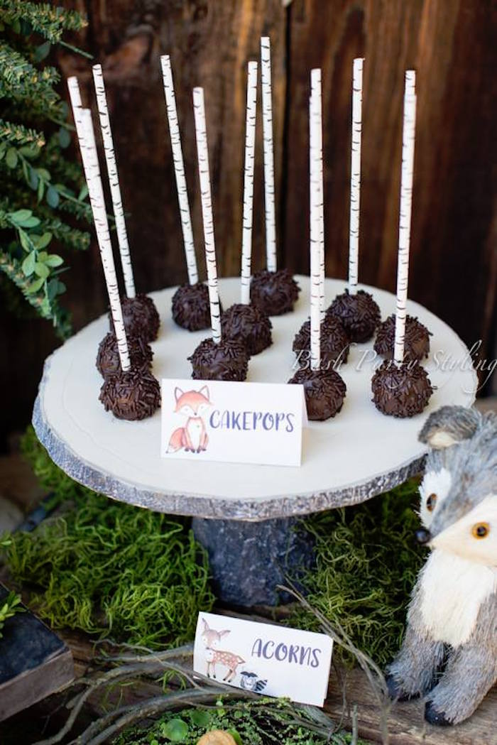 Woodland cake pops from a Woodland Birthday Party on Kara's Party Ideas | KarasPartyIdeas.com (4)