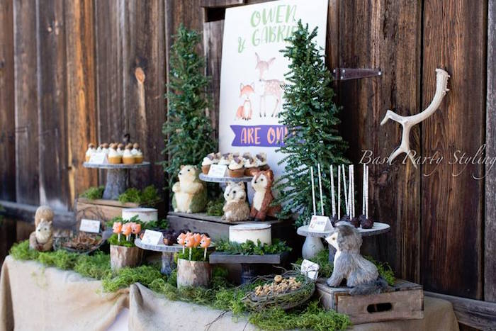 Woodland dessert tablescape from a Woodland Birthday Party on Kara's Party Ideas | KarasPartyIdeas.com (7)