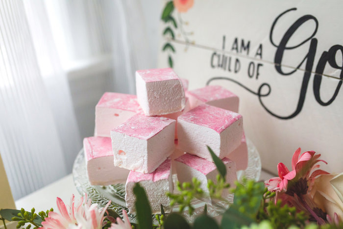 Marshmallow treats from a Best Day Ever Pretty Pastel Birthday Party on Kara's Party Ideas   KarasPartyIdeas.com (31)