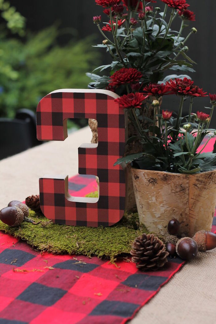 Little Lumberjack Birthday Party on Kara's Party Ideas | KarasPartyIdeas.com (15)