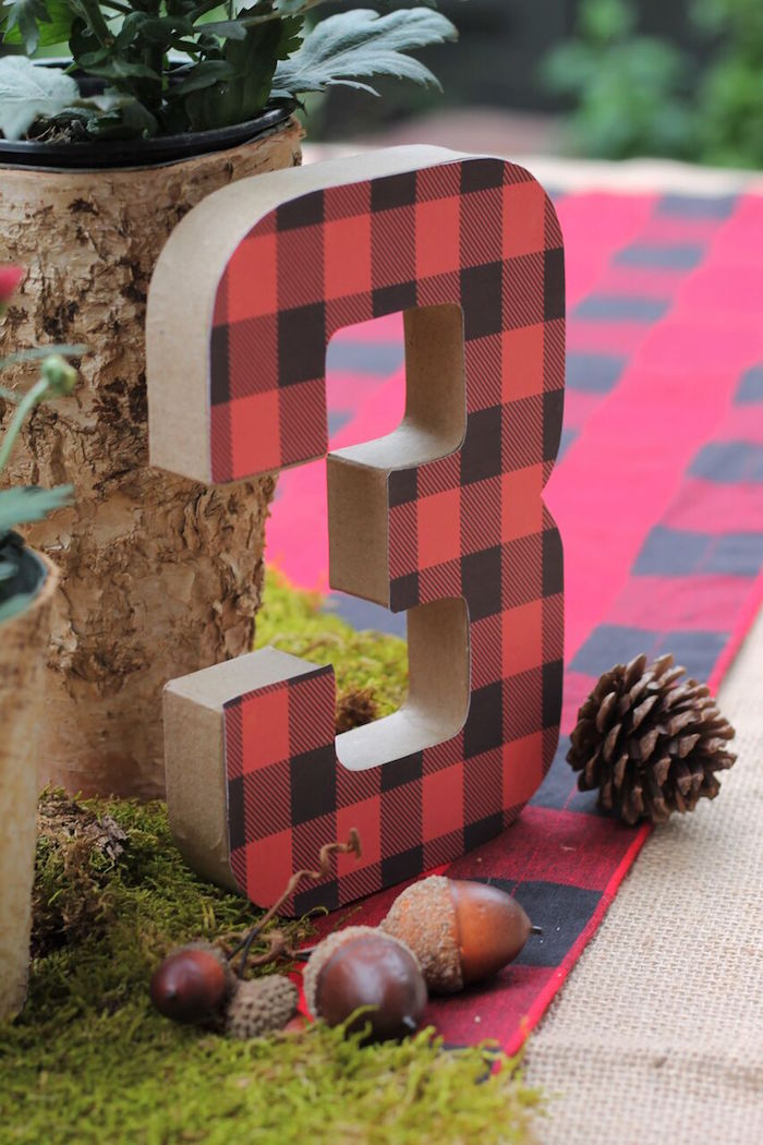 Little Lumberjack Birthday Party on Kara's Party Ideas | KarasPartyIdeas.com (14)