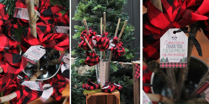 Little Lumberjack Birthday Party on Kara's Party Ideas | KarasPartyIdeas.com (60)