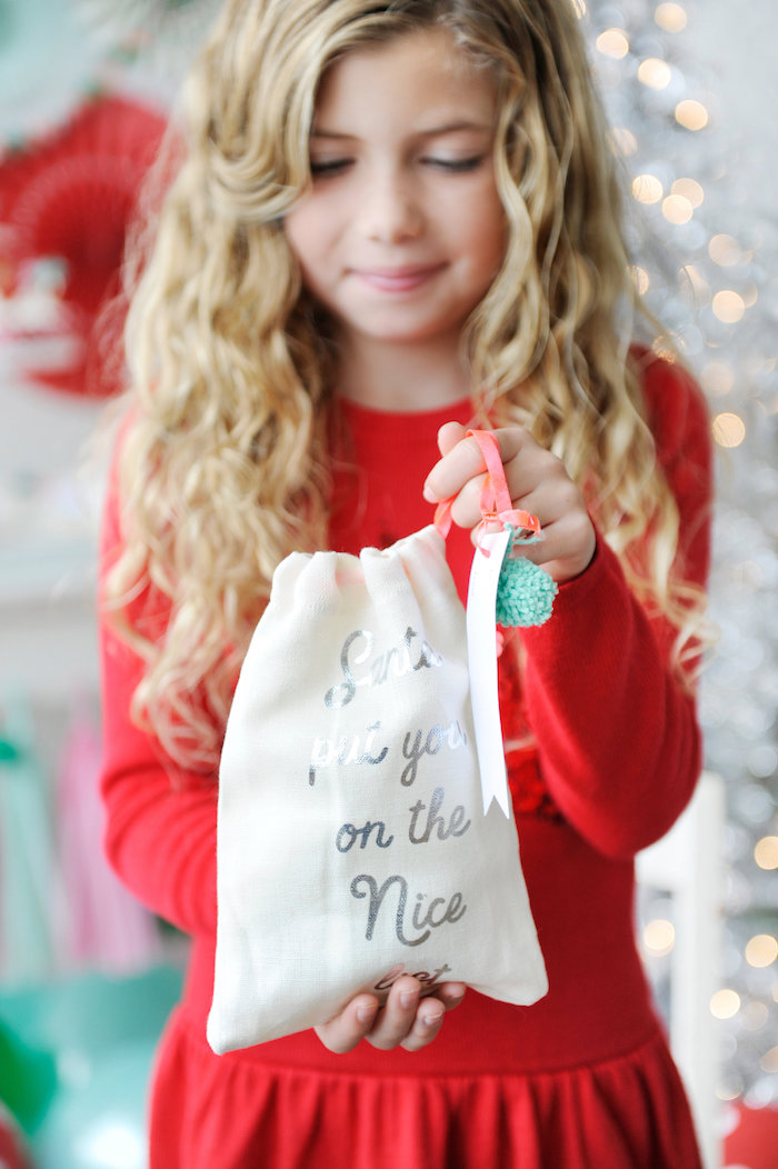 Holiday gift bag from a Merry & Bright Christmas Party on Kara's Party Ideas | KarasPartyIdeas.com (16)
