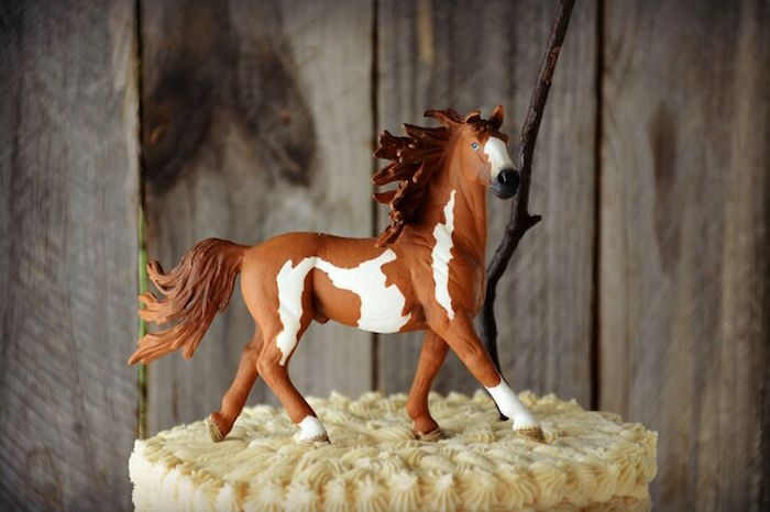 Ideas For Horse Theme Cake