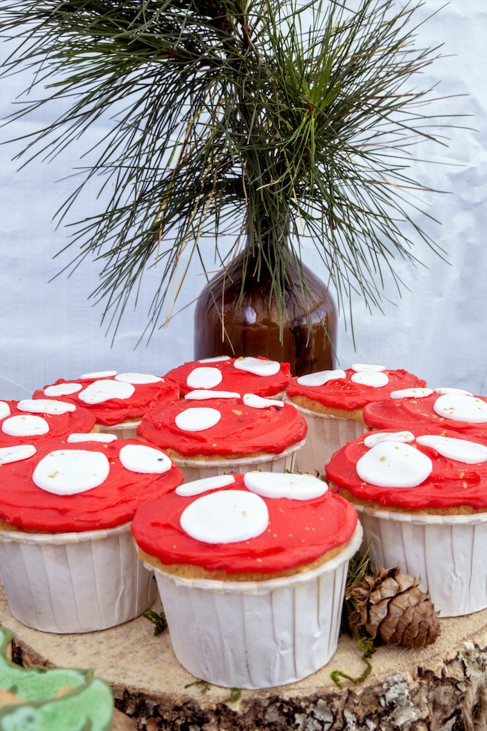 Toadstool cupcakes from a Rustic Wilderness Birthday Party on Kara's Party Ideas | KarasPartyIdeas.com (9)