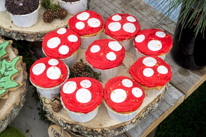 Toadstool cupcakes from a Rustic Wilderness Birthday Party on Kara's Party Ideas | KarasPartyIdeas.com (22)