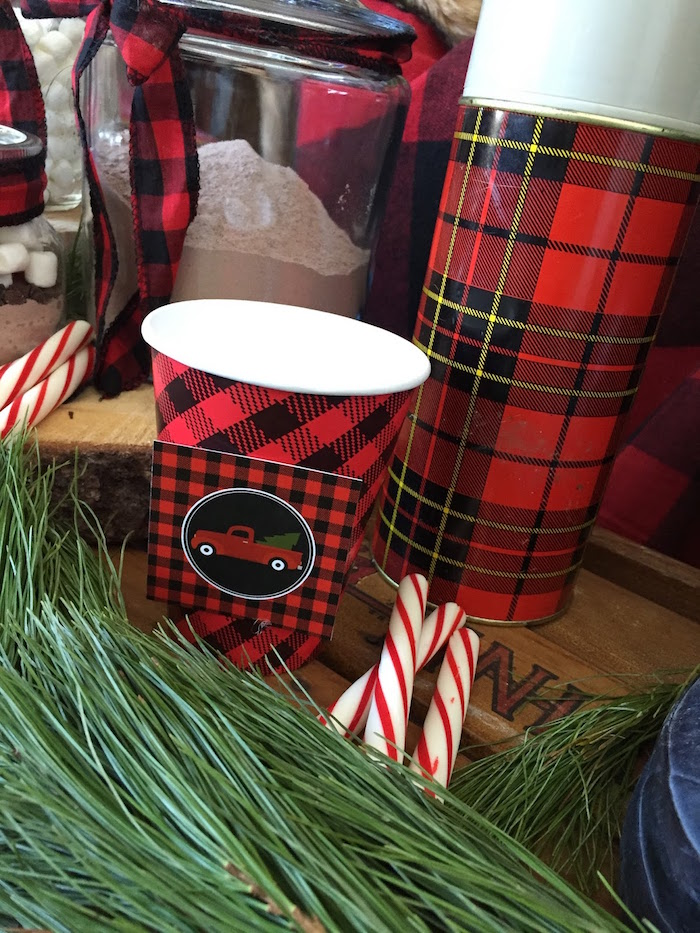Plaid drink cup from a Vintage Rustic Plaid Christmas Party on Kara's Party Ideas | KarasPartyIdeas.com (7)