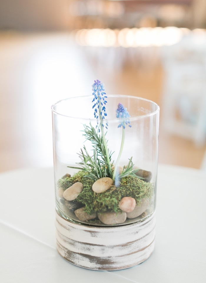 Garden terrarium centerpiece from a Celebrate Spring Party on Kara's Party Ideas | KarasPartyIdeas.com (40)