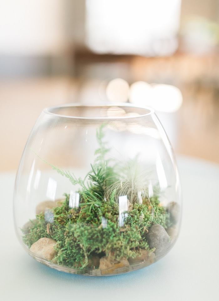Garden terrarium centerpiece from a Celebrate Spring Party on Kara's Party Ideas | KarasPartyIdeas.com (39)