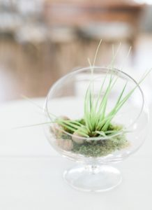Garden terrarium centerpiece from a Celebrate Spring Party on Kara's Party Ideas | KarasPartyIdeas.com (38)
