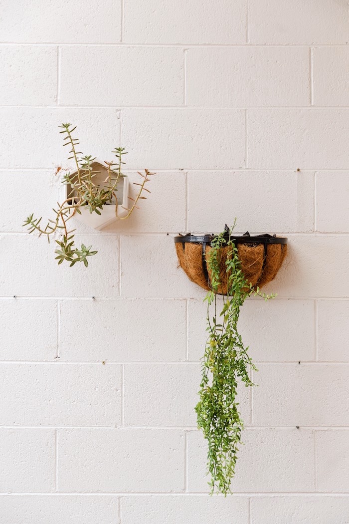 Wall plants from a Modern + Rustic 1st Birthday Party on Kara's Party Ideas | KarasPartyIdeas.com (34)