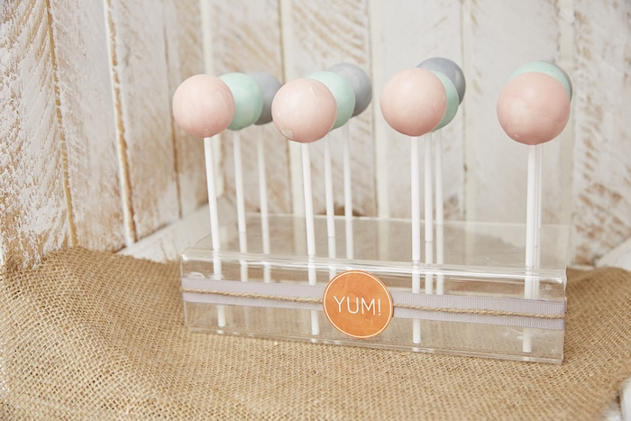 Cake pops from a Rustic Modern Woodland Party on Kara's Party Ideas | KarasPartyIdeas.com (18)