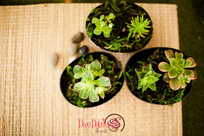 Succulent plants from a Taina Inspired Little Indian Birthday Party on Kara's Party Ideas | KarasPartyIdeas.com (14)