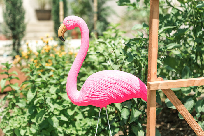 Pink flamingo decoration from a Tropical Birthday Party on Kara's Party Ideas | KarasPartyIdeas.com (18)