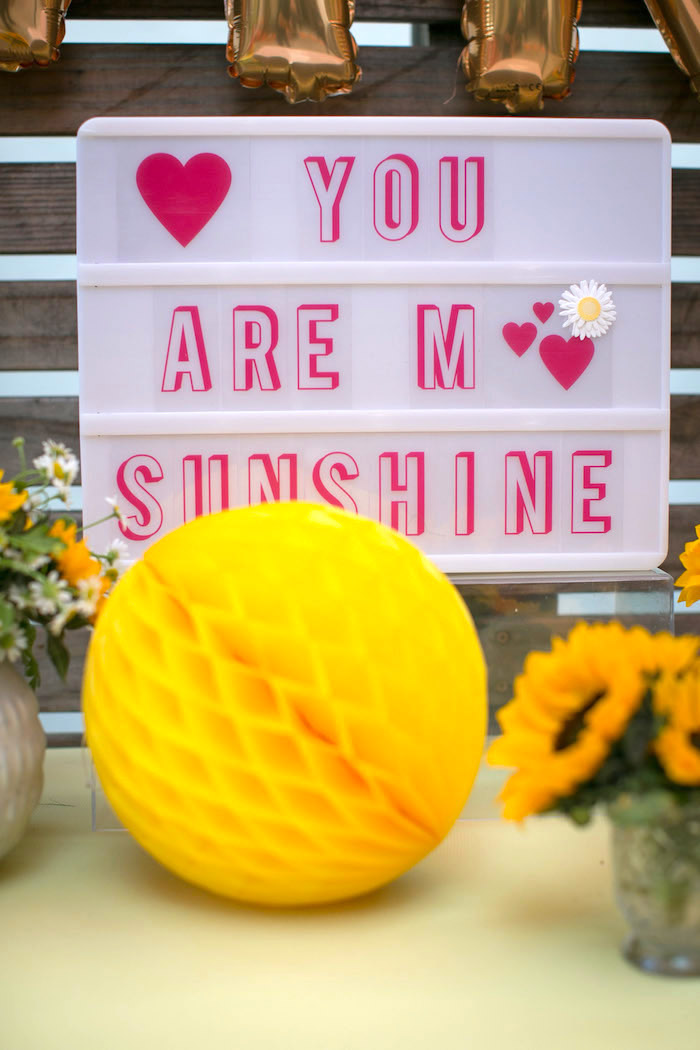 Lightbox sign from a You Are My Sunshine Birthday Party on Kara's Party Ideas | KarasPartyIdeas.com (12)