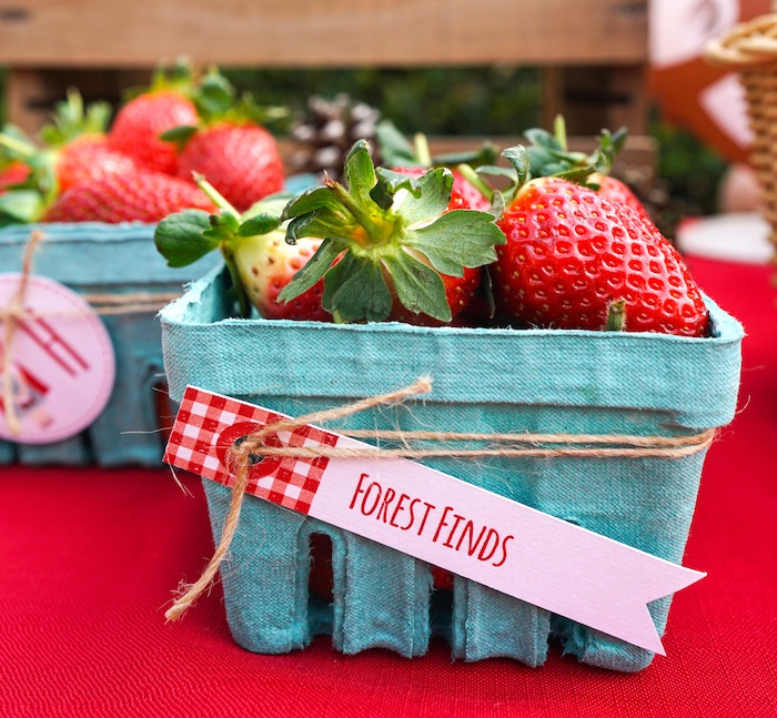 Forest finds from a Little Red Riding Hood Birthday Party on Kara's Party Ideas | KarasPartyIdeas.com (14)