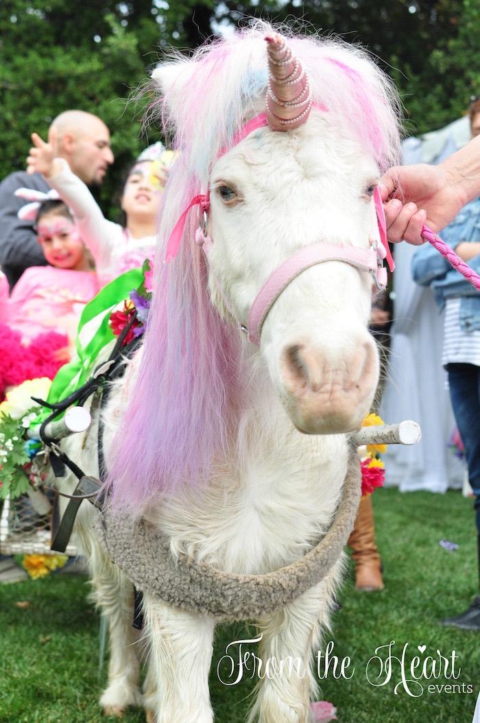 Unicorn from a Rainbow Unicorn Birthday Party on Kara's Party Ideas | KarasPartyIdeas.com (22)