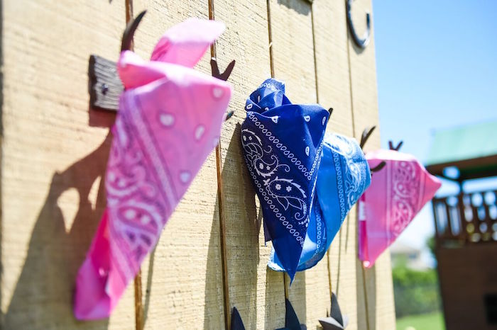 Bandanas from a Shabby Chic Cowgirl Birthday Party on Kara's Party Ideas | KarasPartyIdeas.com (42)