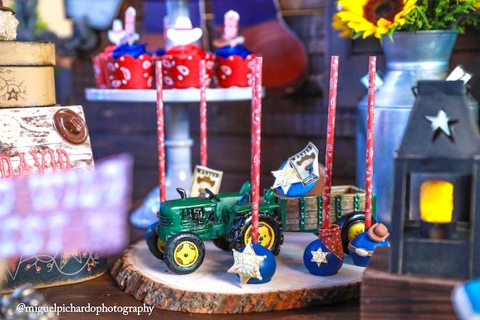Cake pops from a Western Cowboy Birthday Party on Kara's Party Ideas | KarasPartyIdeas.com (28)