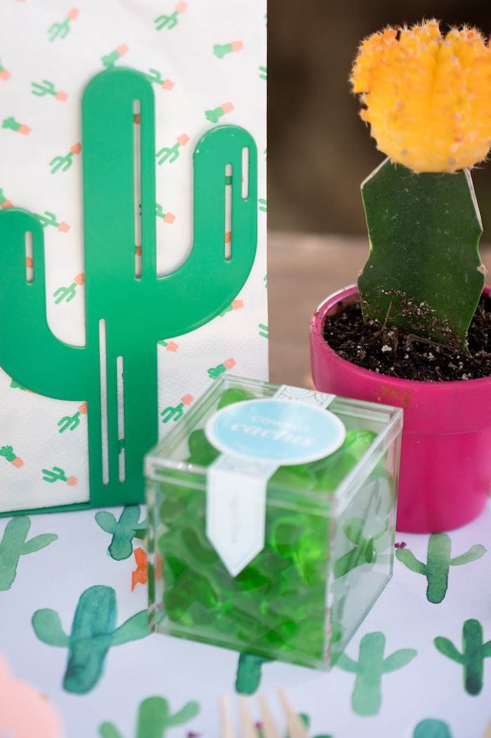 Details from a Cactus Fiesta Baby Shower on Kara's Party Ideas | KarasPartyIdeas.com (13)