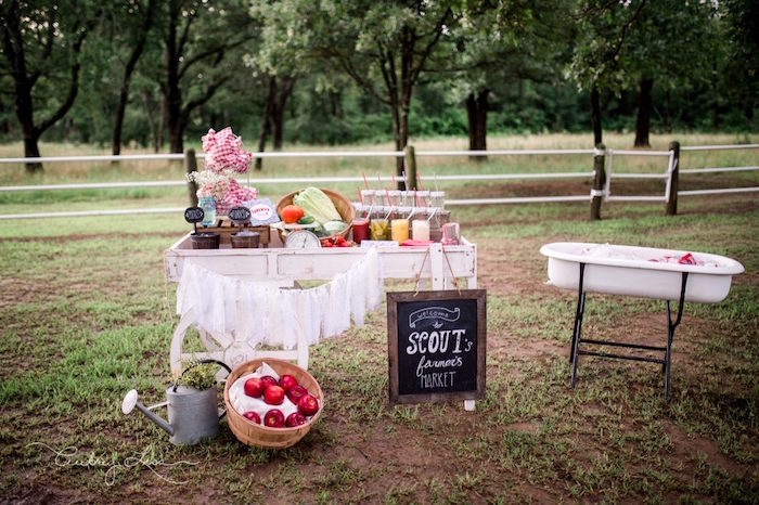 Food and beverage spread from Farmer's Market Birthday Party on Kara's Party Ideas | KarasPartyIdeas.com (19)