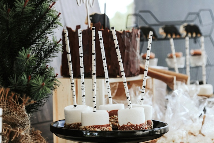 "Marshmallow pops with birch sticks from a Lumberjack + ""Wild ONE"" 1st Birthday Party on Kara's Party Ideas 
